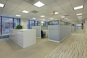 Cubicle Dividers