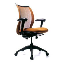 Office Chairs for Bad Backs Tampa | Orlando | Dallas | Seattle